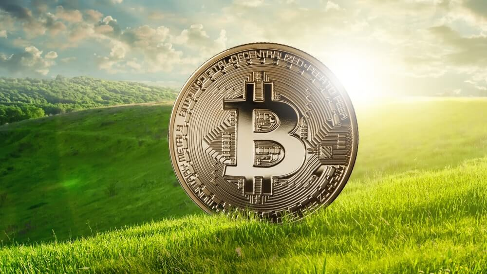 Bitcoin: Bad for Global Growth, Good for Ecology